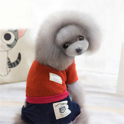 Winter Dog Sweater 06-0214