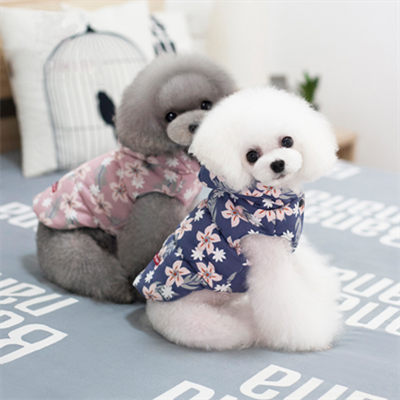 Fashionable Dog Hoodie: Literature and Art Style 06-0219