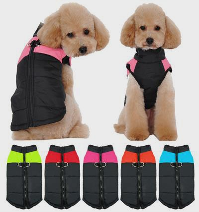 Winter Dog Clothes: Color Plus Velvet Bottoming 06-1020