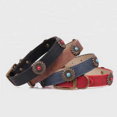 Dog Leash and Collar: Product Bronze Daisy Leather 06-0587