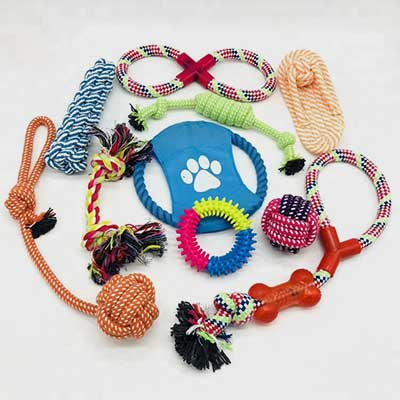 Dog Toy Set: Various Durable 11 Pack Combination Chew 06-0637